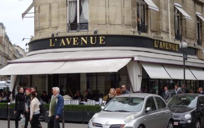 L' Avenue, un escaparate de lujo
