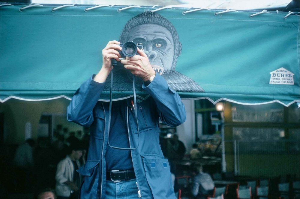 foto, gorila, photoespana, selfportrait